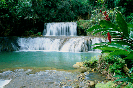 YS-Falls-Jamaica-Natural-Pool-450x300